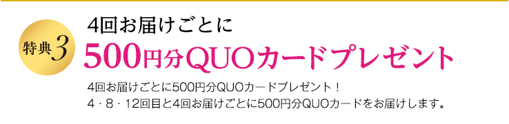 特典3 4回お届けごとに1000円分のQUOカードをお届けします